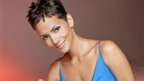 The Hive Starring Halle Berry Casting Information