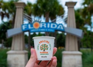Jennings, Florida / USA - July 2019: Holding an orange juice cup in front of the Official Florida Welcome Center's 'Welcome to Florida' sign on I-75. (Editorial credit: Zoe Cappello / Shutterstock.com)